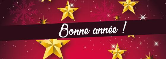 Vos spectacles pour 2017 à St-Etienne, Roanne, Lyon, Grenoble, Issoire.... 70
